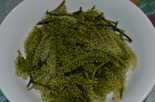 Seaweed Grapes